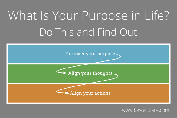 What Is Your Purpose in Life Do This and Find Out - The Be Well Place
